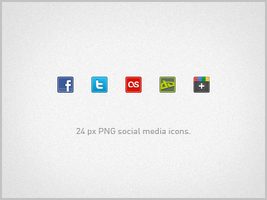 24px Social Media Icons by LocoRobo