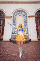 Eternal Sailor Venus. For The Victory! by LoveSenshi