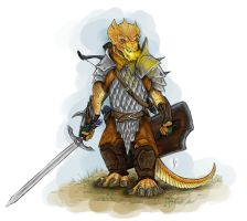 Dungeons and Dragons: Drakka (Colour) by ShoutFinder