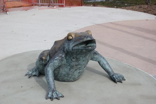 Lifeless Toad by Tinker-Jet