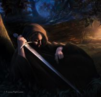 Lord of the Rings: Sleeping Sentry by Thaldir