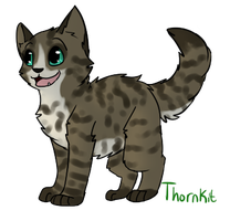 Thornkit by Spiritpie