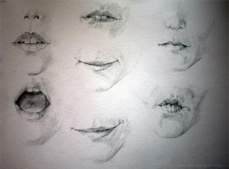 Mouth Study by Teries-art