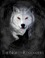 The North Remembers by Kasye
