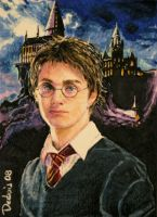 Harry Potter by DavidDeb