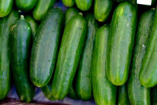 Zucchini Group 13643169 by StockProject1