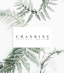 Chanbins Texture Pack #6 by dontayyy