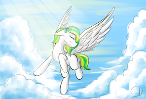 Feel the wind by PhuocThienCreation