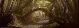 Forest by dcartshed