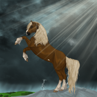 Perfect Storm by Cerulean-Sky-Stables