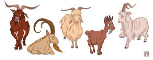 Goat Designs by cachava