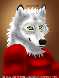 Okami-Dono Failseeker Colored By Shay Wolf-dcga9j3 by Fail-Seeker