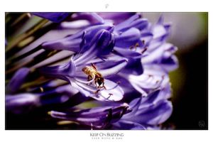 Keep on Buzzing by zachlost