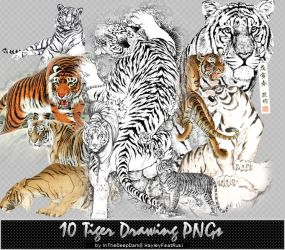 10 Tiger Drawing PNGs by InTheDeepDark