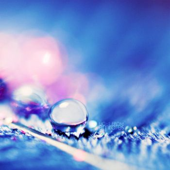 shiny blue - drop . .. by light-from-Emirates