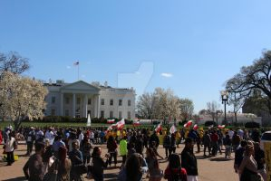 Iran Protest at the White House - Washington, DC by squirrelismyfriend
