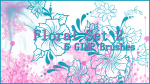 GIMP Floral Set 2 by Illyera