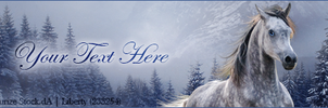 Stable Banner ~ Winter Premade by Liberty-Designs