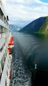 cruising the fjords by TaitGallery