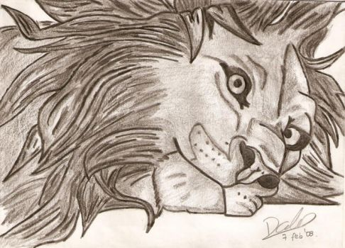 Resting Lion by Romi07