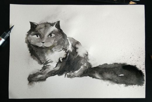InkCat by aniamarcos