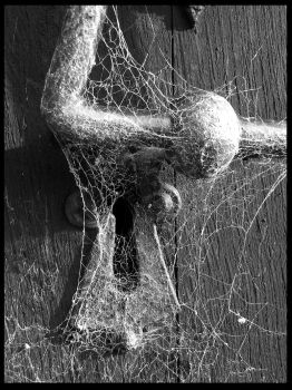 Cobwebs and handle by alanclimb