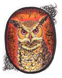 Horned Owl by avaunt