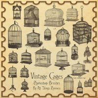 Vintage Birdcages Brushes by AllThingsPrecious