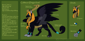 Coldmoon_dragon form_RefSheet by Husgryph