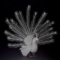 Peafowl - Paper cut birds by NVillustration
