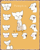 Pillowing White Pumpkin Entry 2 by tubachic