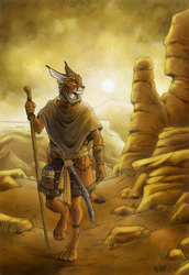 The Wanderer by 0laffson