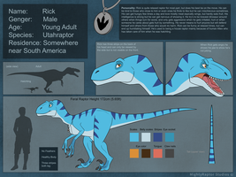 Rick's Reference Sheet 2017 by MightyRaptor