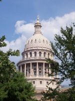 Texas Capitol Dome 1 by Trivas