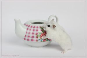 Do you want a cup of hamstea ? by hoschie