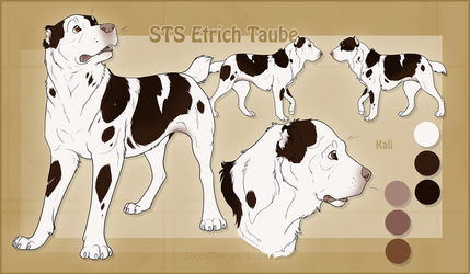 STS Dog- Kali by ShockTherapyStables