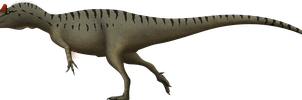 Allosaurus fragilis by SpinoInWonderland