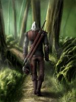 The Witcher 2, Geralt by Nikki-67