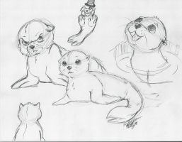 Seals by Ratty08
