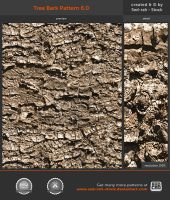 Tree Bark Pattern 6.0 by Sed-rah-Stock