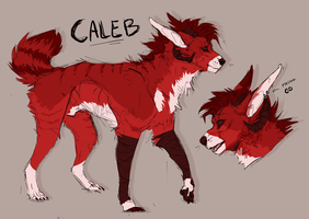 calebs_ref by nerfusia