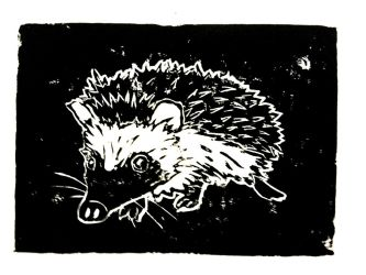 Hedgehog by Milana87