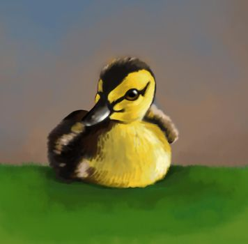 Duckling by Millia91