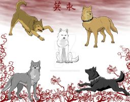 Wolf's Rain by earthsea-23