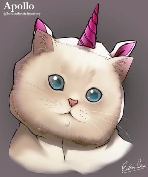 The Unicorn Cat by Esther-Shen