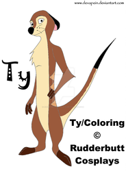 Ty - Ref. Sheet by RudderbuttCosplays