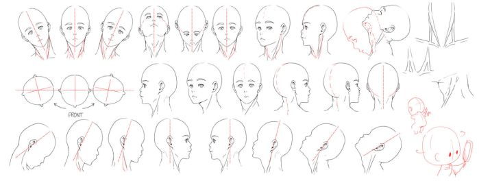 Resources: Head-Neck 1 by deeJuusan