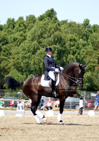 Dressage 40 by JullelinPhotography