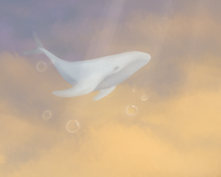whale by VeraBrony
