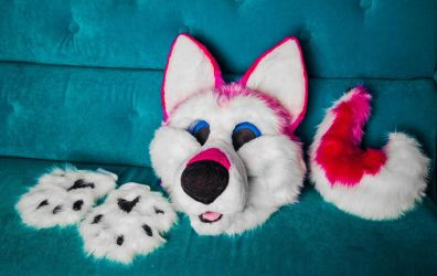 Husky suit Pink edition by yiffFox